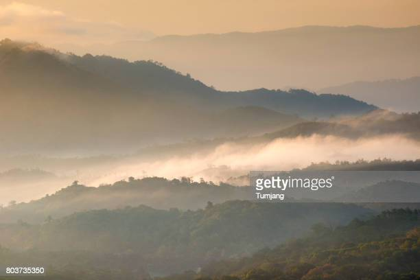 Rain mist rising from the forest  in Doi Inthanon National Park Valley, chiangmai, Southeast Asia, Asia