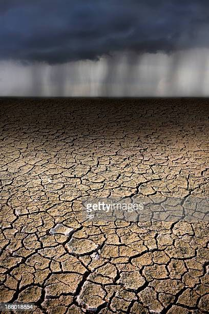 Rain on Parched, Cracked Ground
