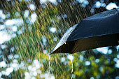 Close up of umbrella in the rain with copy space