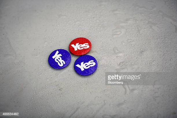 Rain water covers pin badges as they sit on a table outside the proindependence 'yes' campaign office in Edinburgh UK on Monday Sept 15 2014 UK Prime...
