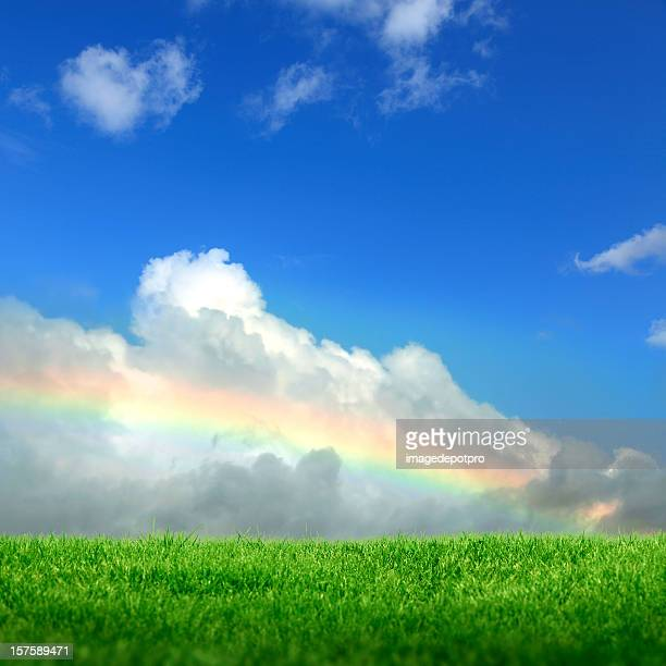 rainbow and green clean landscape