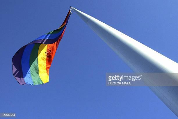 A rainbow flag raises above Castro the gay and lesbian neighborhood in San Francisco 18 February 2004 San Francisco's Mayor Gavin Newson has declared...