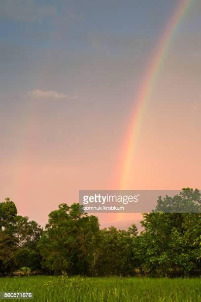 Rainbow in rainy season