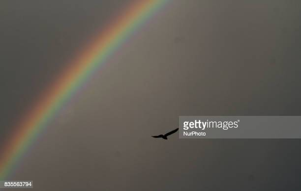 A rainbow is seen in the sky after a sudden downpour atop of the eastern Indian state Odisha's capital city Bhubaneswar on 19 August 2017