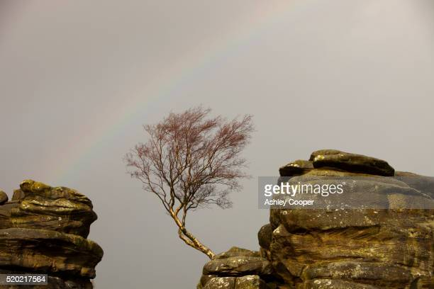 A rainbow over Brimham Rocks