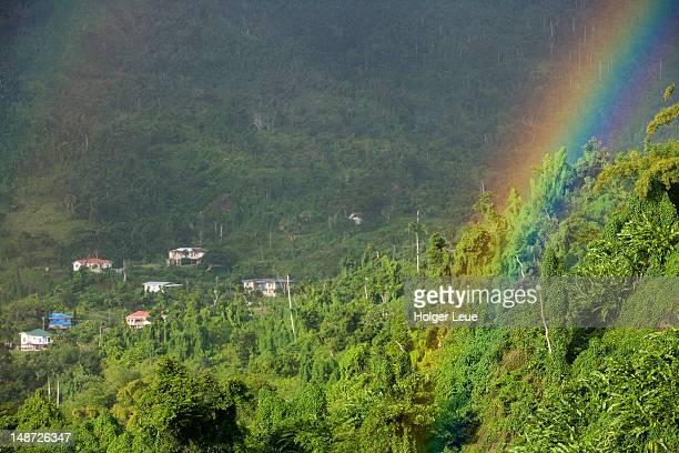 Rainbow over rainforest.