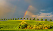 rainbow over the spring field after passing the storm
