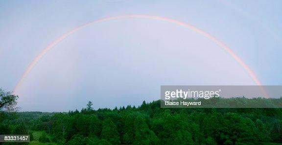 rainbow over trees : Stock Photo