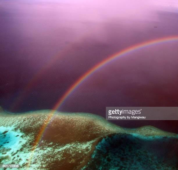 Rainbow Reef