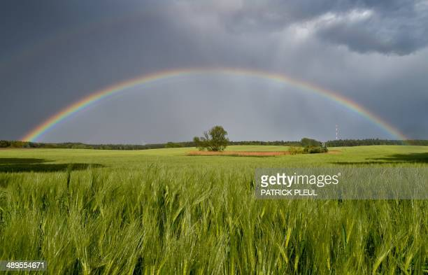 A rainbow spans over a field near Sieversdorf eastern Germany on May 11 2014 AFP PHOTO / DPA / PATRICK PLEUL / GERMANY OUT