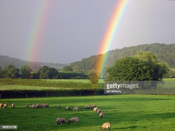 Rainbow Strike