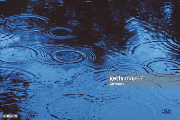 Raindrops in puddle