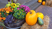 Colorful Autumn Thanksgiving display with flowers,pumpkins and straw.