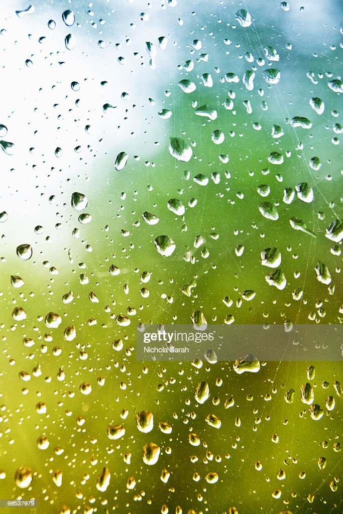 Raindrops : Stock Photo