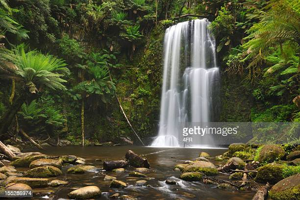 Rainforest Waterfall, Beauchamp Falls, Australia (XXXL)