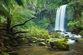Rainforest waterfalls, Hopetoun Falls, Great Otway NP, Victoria, Australia