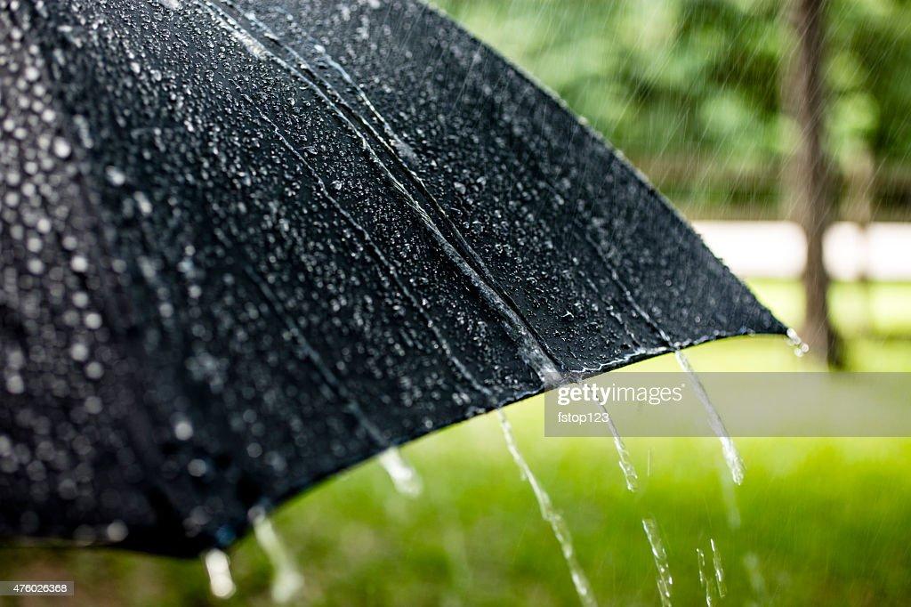 Rainy day. Raindrops falling on black umbrella outdoors. Spring, summer. : Stock Photo
