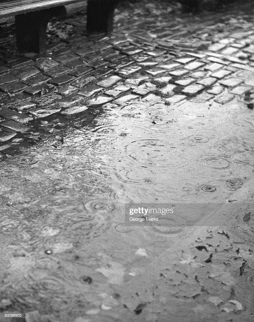 Rainy street : Stock Photo