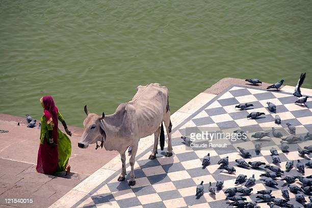 Rajasthani woman on Ghats in Pushkar