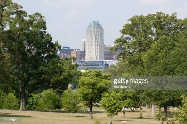Raleigh y árboles