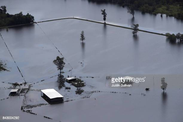 A ranch is inundated by floodwaters on September 5 2017 near Beaumont Texas Over a week after Hurricane Harvey hit Southern Texas residents are...
