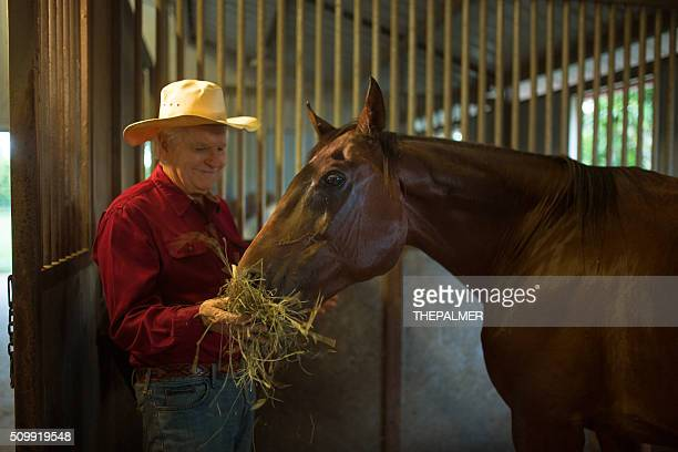Rancher with horse