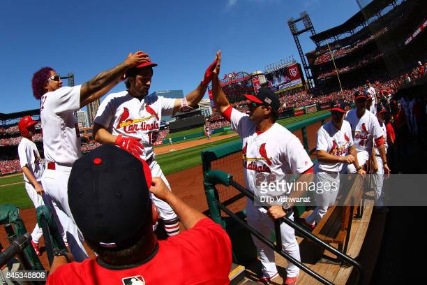 Randal Grichuk of the St Louis Cardinals is congratulated by manager Mike Matheny and Carlos Martinez of the St Louis Cardinals after hitting a home...
