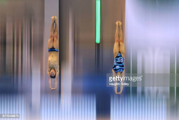 Randal Willars Valdez and Viviana Del Angel Peniche of Mexico compete in the Mixed 10m Final during the 2017 FINA Diving World Series at the Windsor...