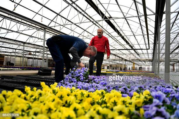 Randy Ortega of Nick's Garden Center in Aurora getting numbers for an order of Matrix Light Blue pansies with Al Gerace the president of Hardy Boy...