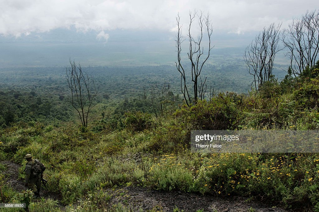 A ranger walks down from the top of Mount Nyiragongo with neighbouring Rwanda lying at the horizon The Nyiragongo is an active stratovolcano with an...
