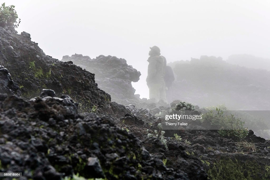 Rangers walk in the morning mist on the edge of the main crater of Mount Nyiragongo The Nyiragongo is an active stratovolcano with an elevation of...