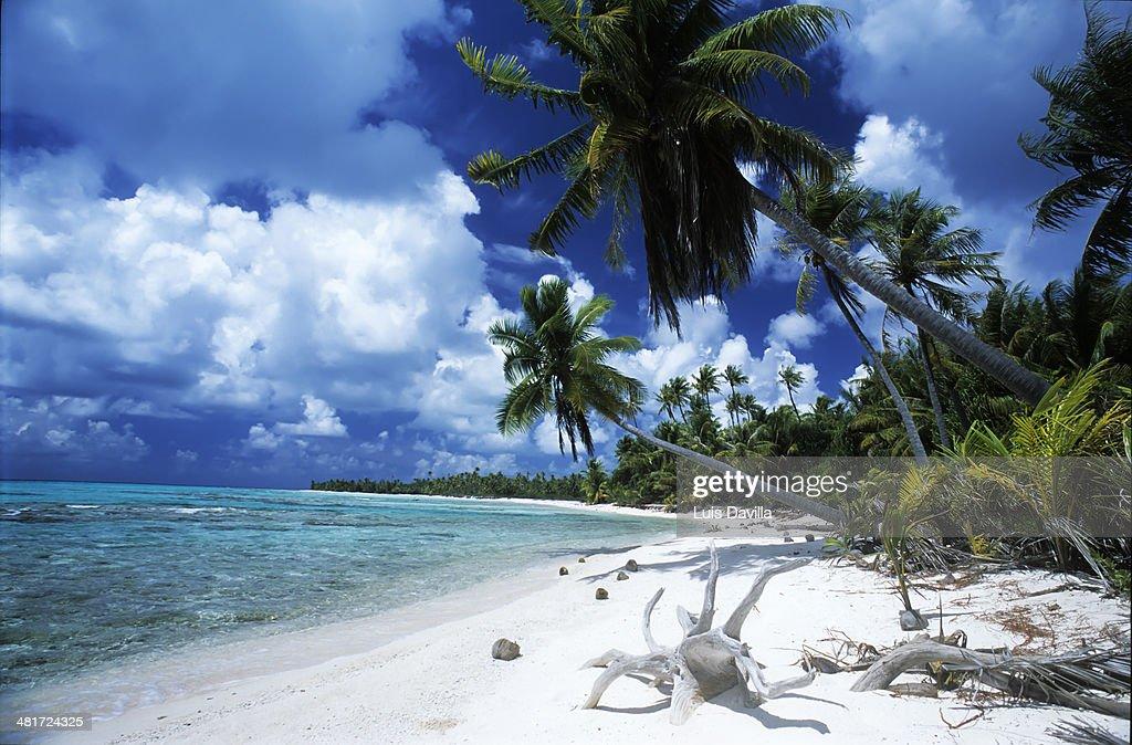 rangiroa. Polynesia