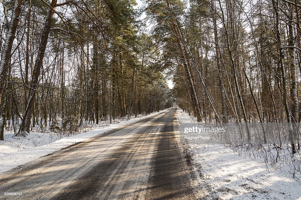 Raod in winter forest : Stock-Foto