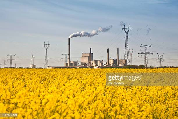 Rapefield in blossom with powerplant