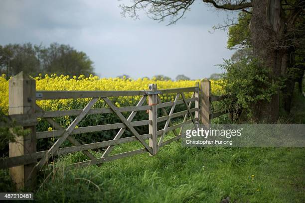 Rapeseed and a farm gate mark the point where the proposed route of the new HS2 high speed rail link will pass through near to the village of...