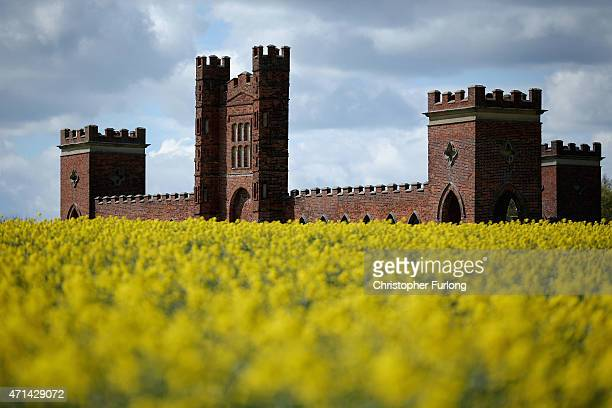 Rapeseed begins to bloom and besets Vernons Folly on April 28 2015 in Sudbury England The deercote is known locally as Vernons Folly is believed to...