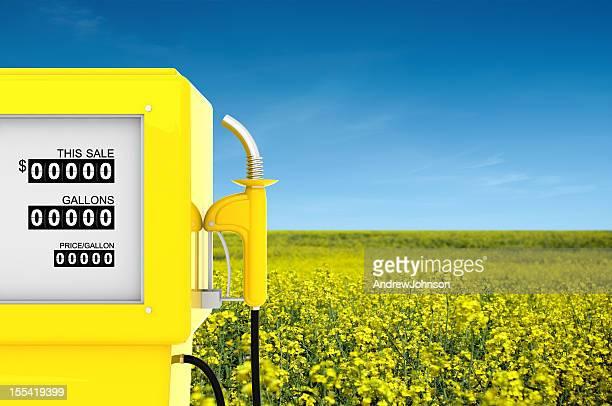 Rapeseed Biofuel Konzept