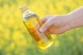 rapeseed oil in bottle in hand on background rape field