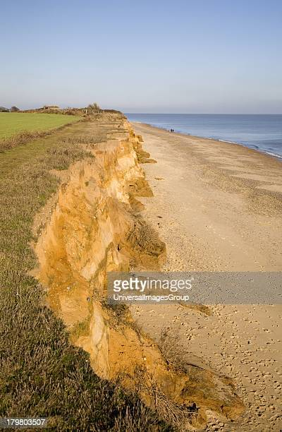 Rapid coastal erosion of soft cliffs between Benacre and Kessingland on the Suffolk coast England The cliffs were formed by glacial outwash of sands...