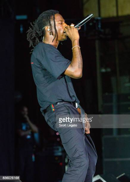 Rapper Joey Bada$$ performs in support of the Everybody's Tour at Meadow Brook Music Festival on August 20 2017 in Rochester Michigan