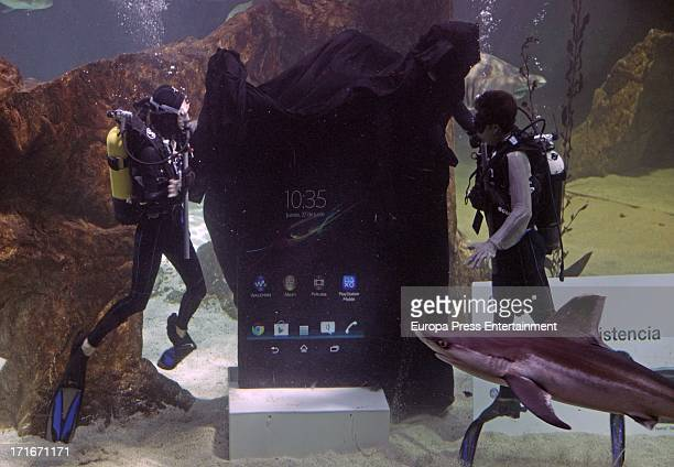 Raquel Sanchez Silva and Maxi Iglesias show 'Smartphone Xperia Z' resistance diving with sharks at Zoo Aquarium Madrid on June 27 2013 in Madrid Spain