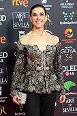 ESP: 34th 'Goya' Cinema Awards 2020 Red Carpet Photocall