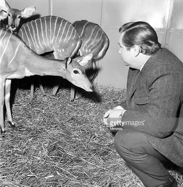 Rarest animals in the Salford quarantine zoo January 1971 7100145