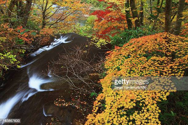 Rarumanai waterfall, Hokkaido