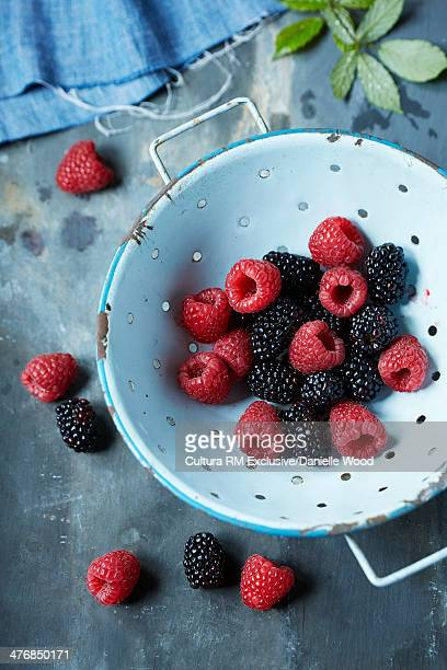 Raspberries and blackberries in a colander on a slate background with raspberry leaves