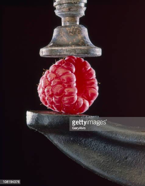 Raspberry Between Vise Grip on Black Background