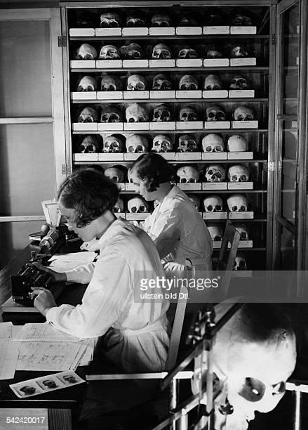 Rassenforschung an der Universität Kielwissenschaftliche Mitarbeiter bei derAuswertung gesammelter Daten 1932
