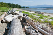 The Rathtrevor Beach in Parksville is a popular destination on Vancouver Island
