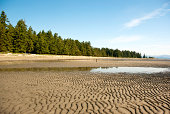 The Rathtrevor Beach in Parksville is a popular destination on Vancouver Island. Shot in the morning in early summer, the tide is low.