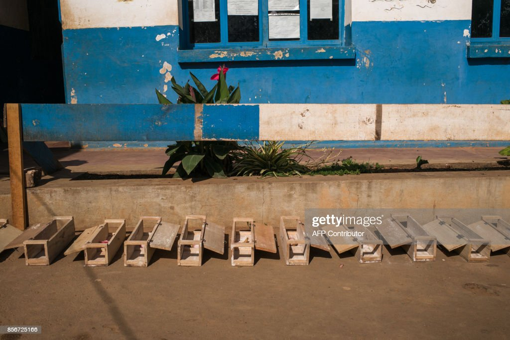 Rat-traps are pictured in a primary school at Andraisoro, a district of the Antananarivo on October 2, 2017. Rats disseminate fleas which are carrier of the plague bacterium. Rats enter these little wood boxes which contain a pesticide that kills fleas. /